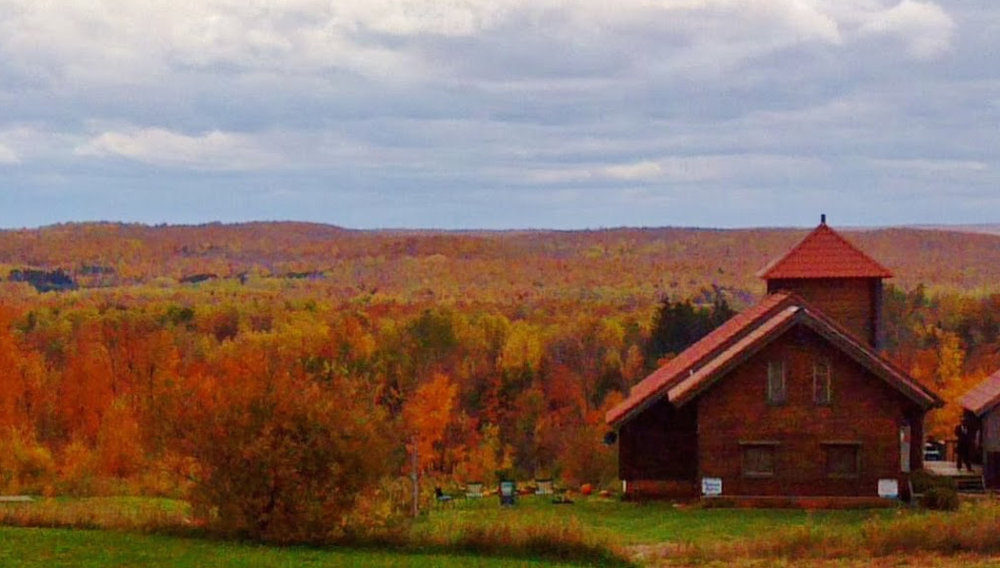 honka house in fall panorama crop.jpg