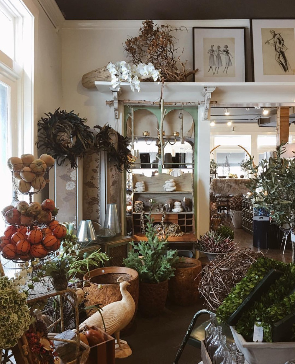 Arena's   is a the perfect spot to get your home decor, plant and floral shopping done all in one.