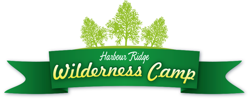 To learn more about Wilderness Camp, ages 12-17, click the image.