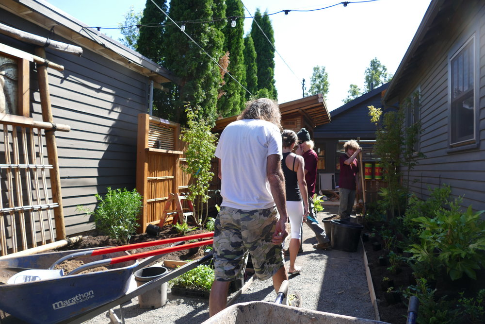 2017: Planting install day! Gone is the muddy approach and in its place a crushed gravel pathway, making a pleasant shsshing sound underfoot. The fencing has been unified into the siding of the teahouse and other bamboo features.