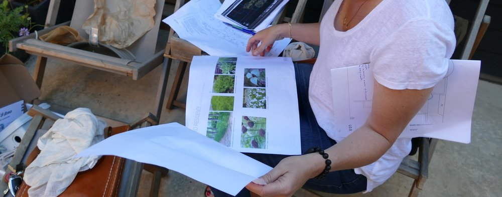 2017: Landscaping meeting V4.0. Once the layout had been settled upon, the landscape designers collaborated with Shannon to select a texture + tonal palette she found soothing.