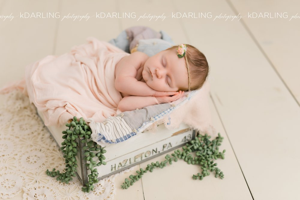 Newborn-Photography-Champaign-County-IL-Girl-pink-white-darling_1938.jpg