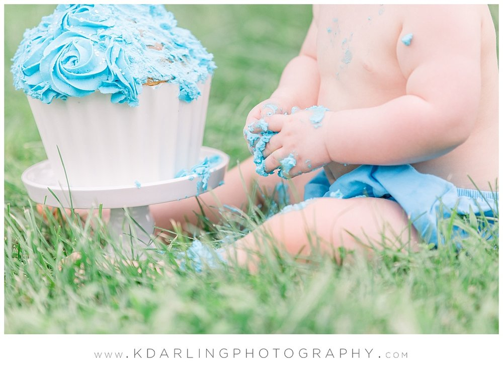 Central-Illinois-baby-child-photographer-first-birthday-boy-cake-smash_0474.jpg