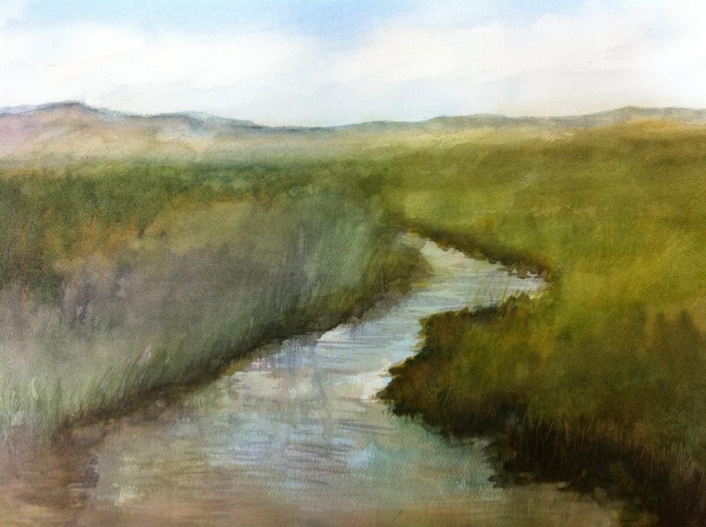 Salt Marsh Benicia