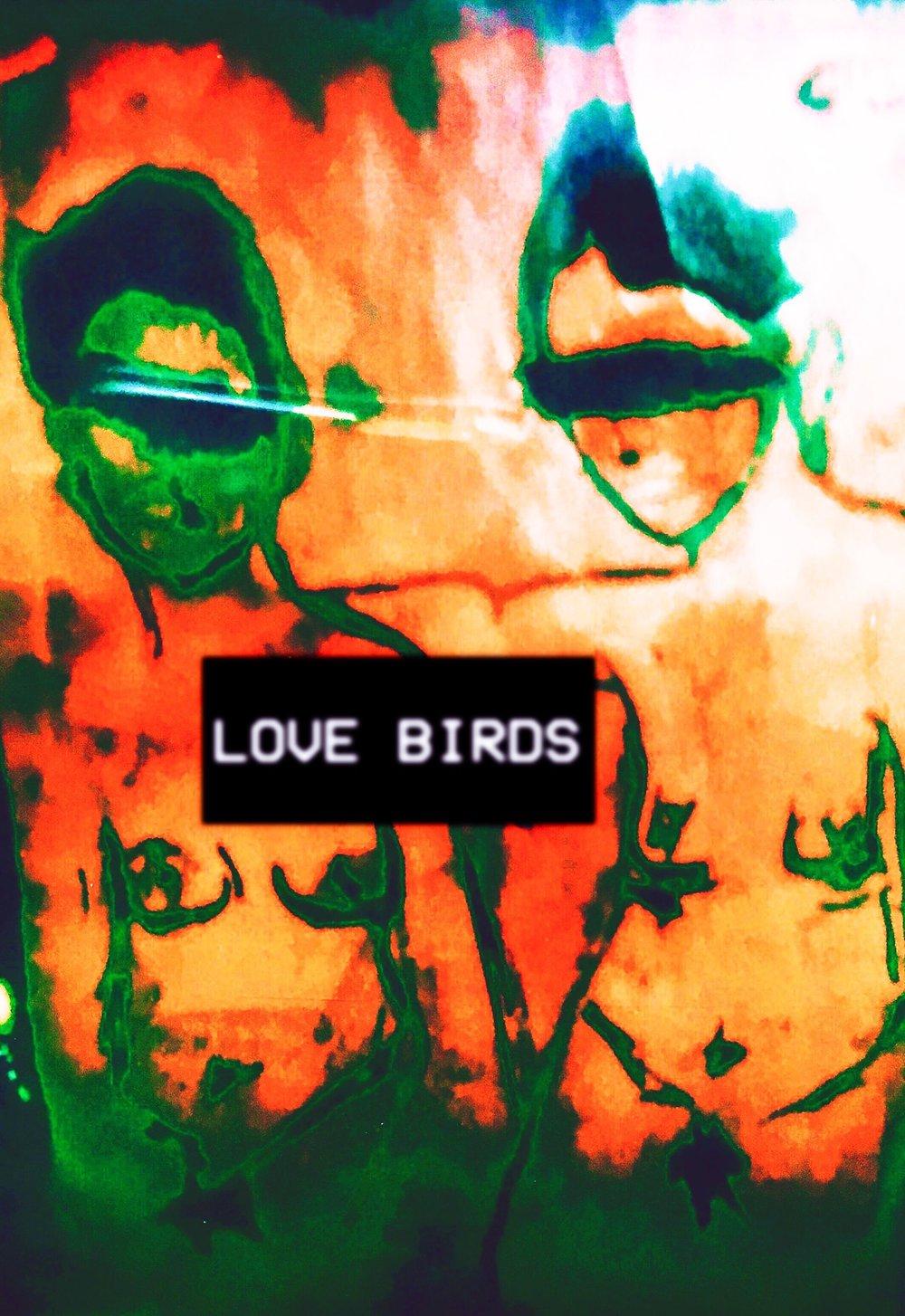 1_LOVE_BIRDS.jpg