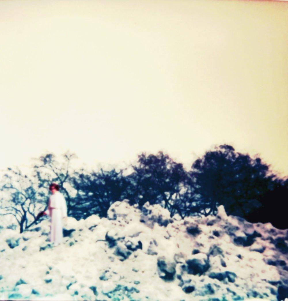 Rebel Snow Field - 2