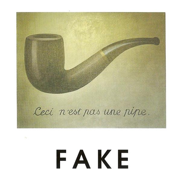 fake1.jpeg