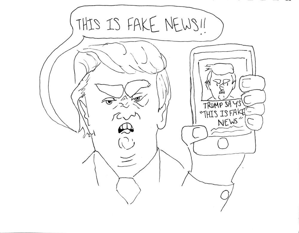 Maggie Harvey, Cartoonist