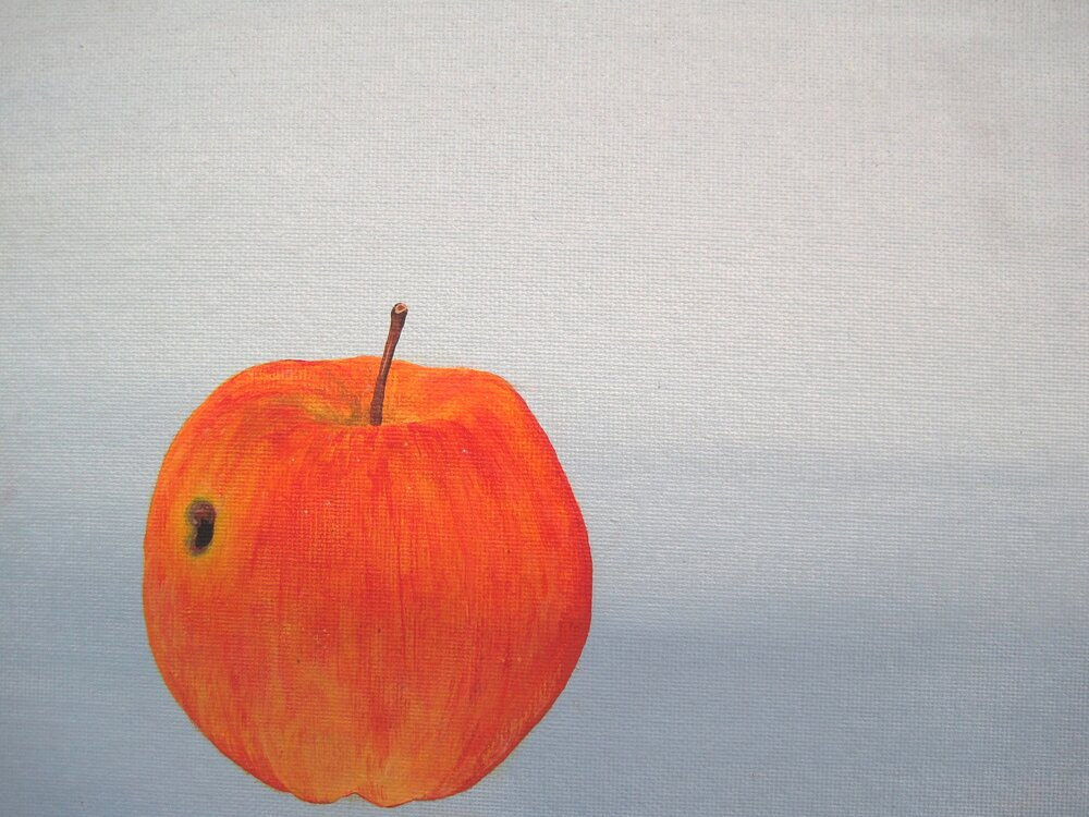 Apple with wormhole