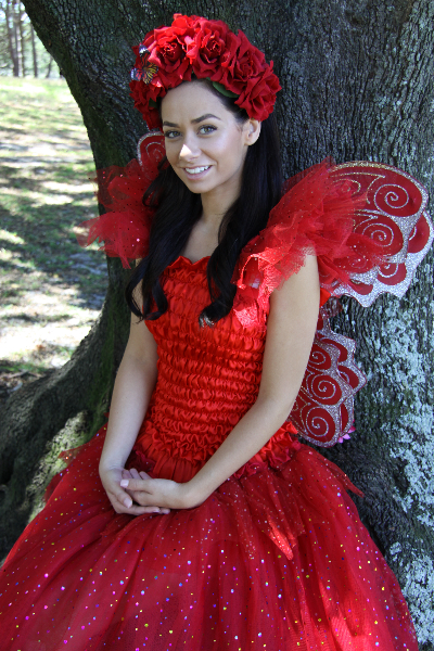 Red sparkle fairy dress