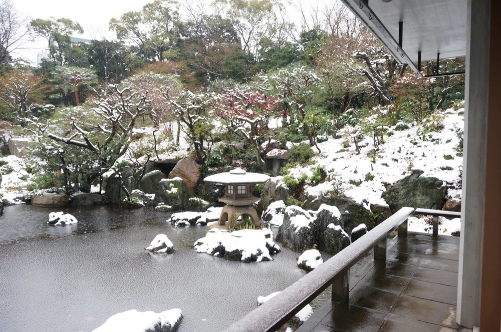 The I-House Garden in Winter