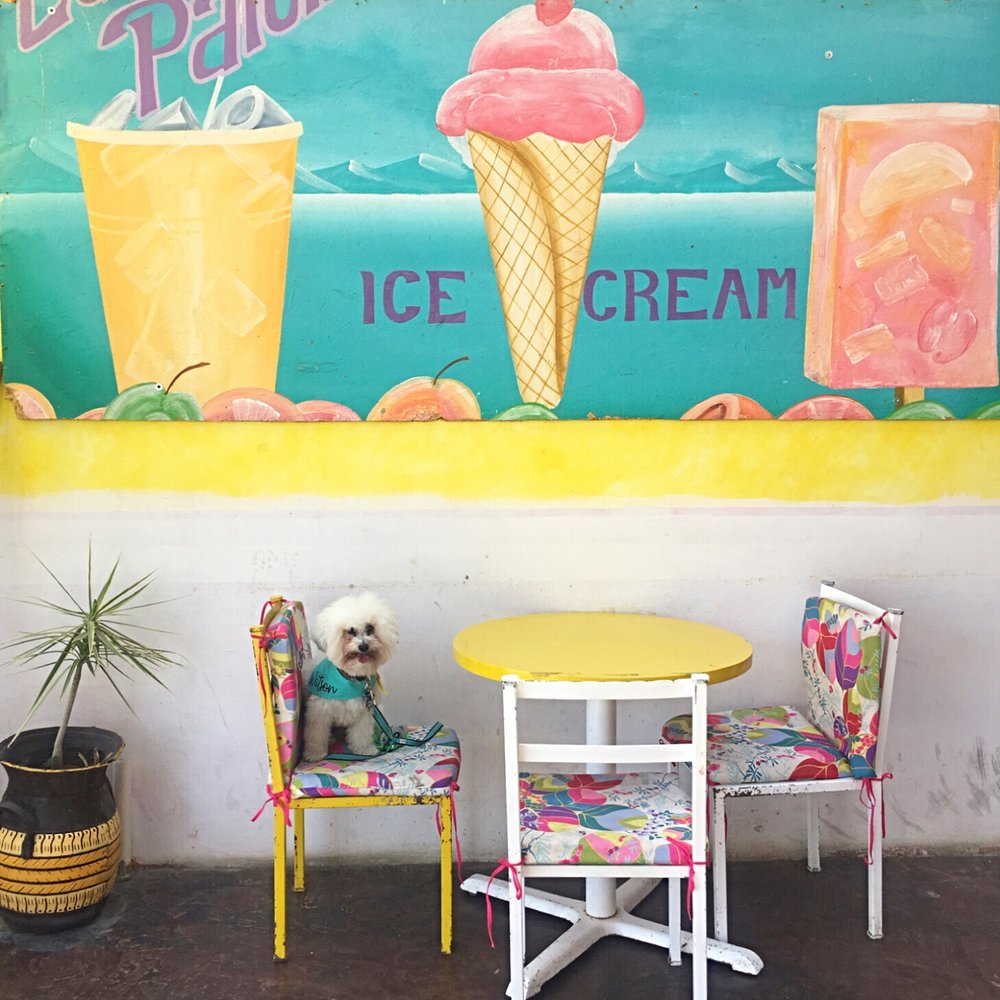 Ice cream in Todos Santos, BCS Mexico | Watson & Walls