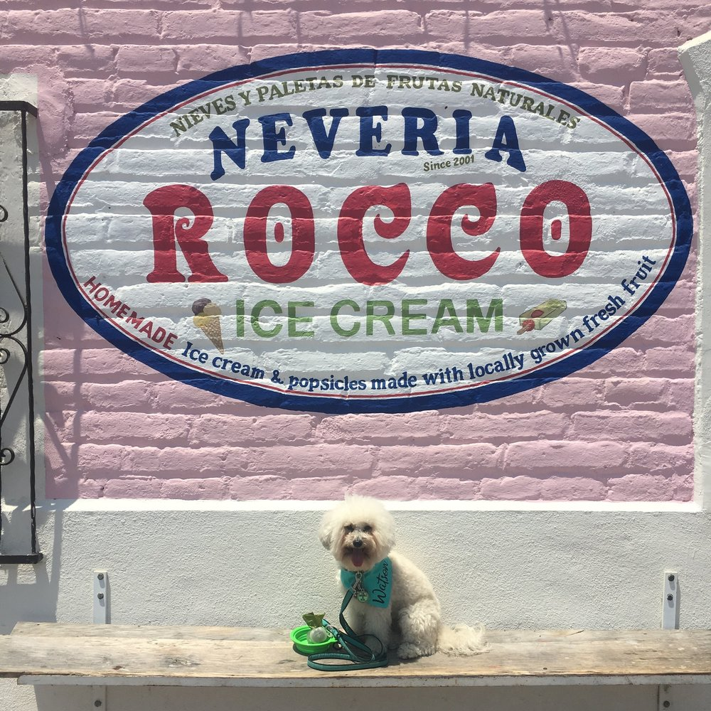 Neveria Rocco Ice Cream shop in Todos Santos, BCS Mexico | Watson & Walls