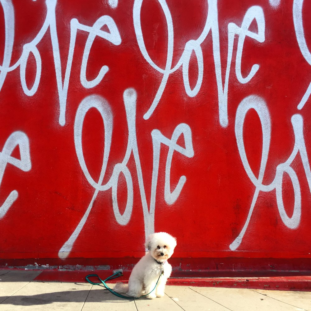 Love Wall by Curis Kulig
