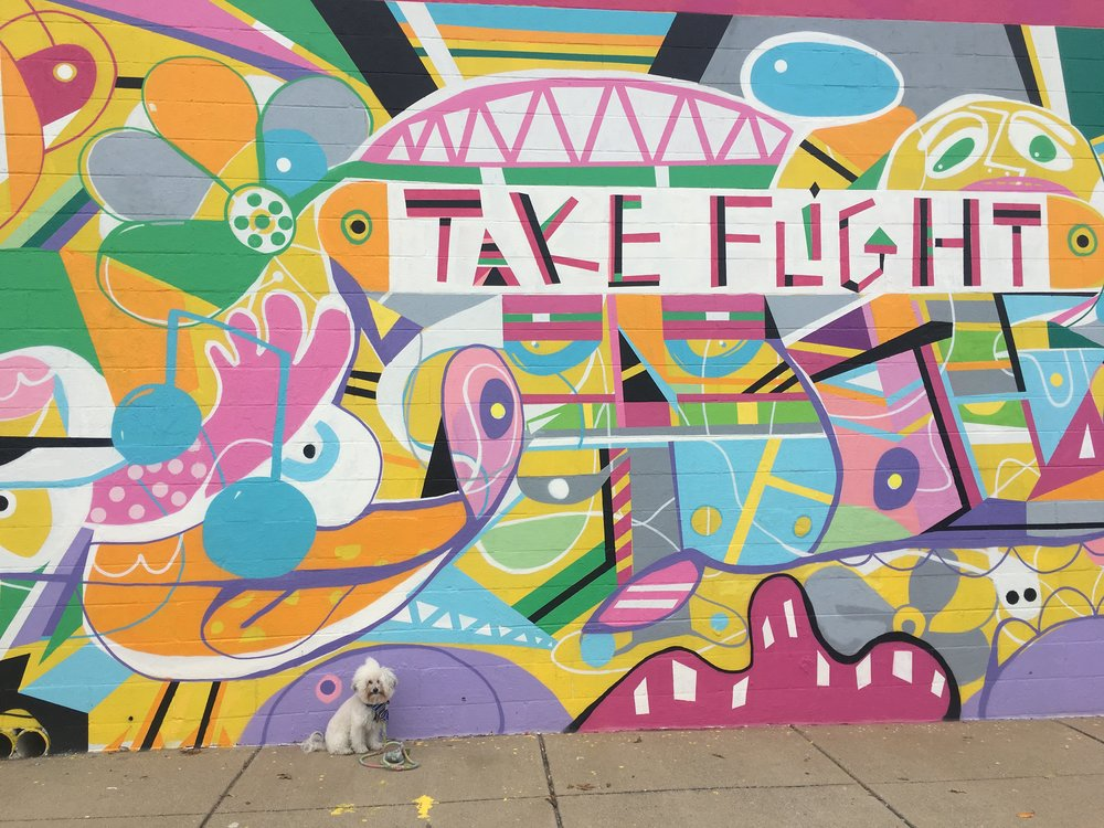 Watson by Kevin Bongang's Take Flight mural, one of the murals that's part of Off the Wall on Charlotte Ave in Nashville, TN | Watson & Walls