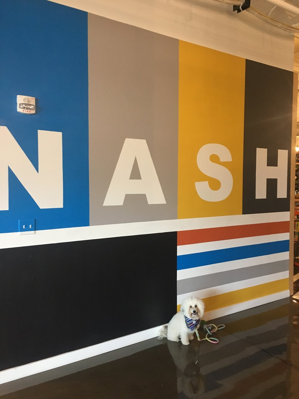 Watson by the Nashville mural in the Google Fiber office in Nashville, TN | Watson & Walls