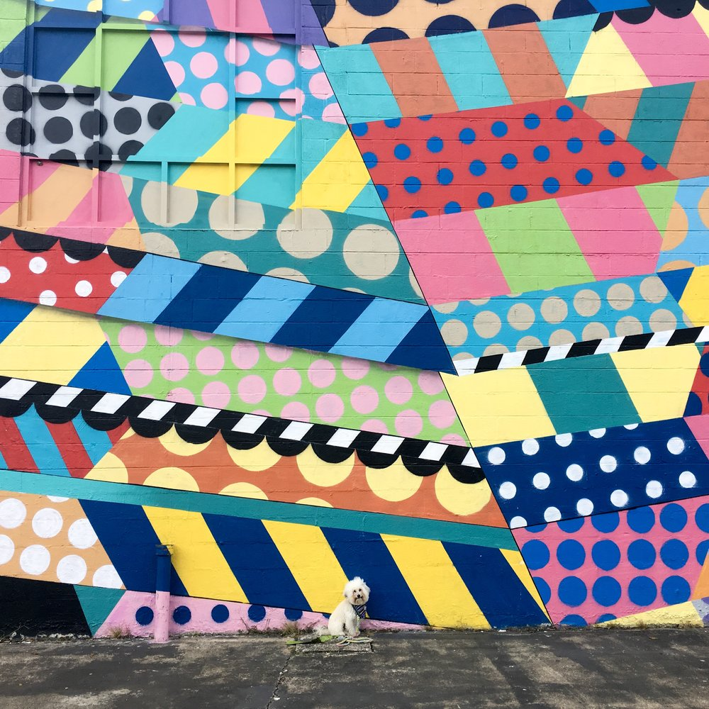 Watson by a pattern mural done by Jason Woodside in Nashville, TN | Watson & Walls