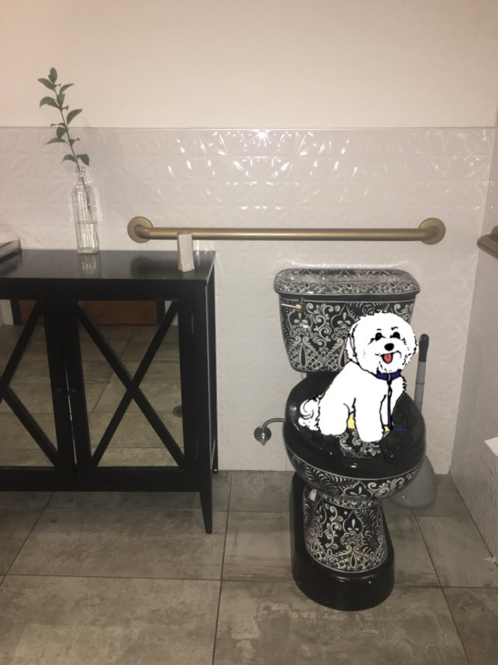 Watson on the cutest toilet ever at Mockingbird Restaurant in Nashville, TN | Watson & Walls