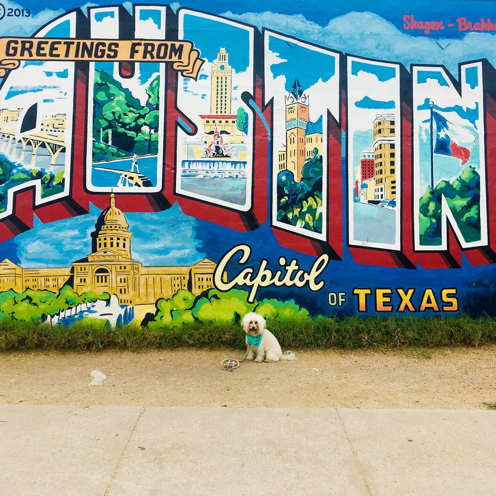 Watson with the Greetings from Austin Mural in Austin, TX | Watson & Walls