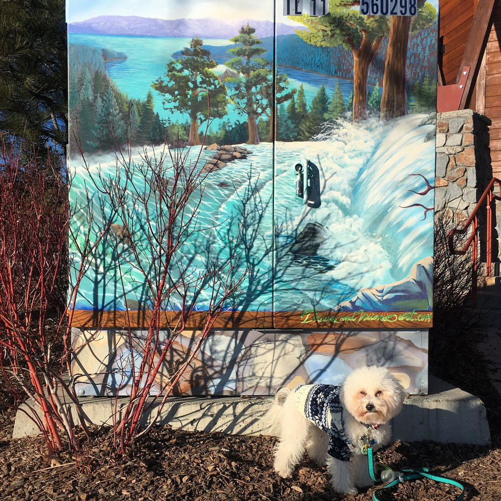 Watson by a mural in South Lake Tahoe, CA | Watson & Walls