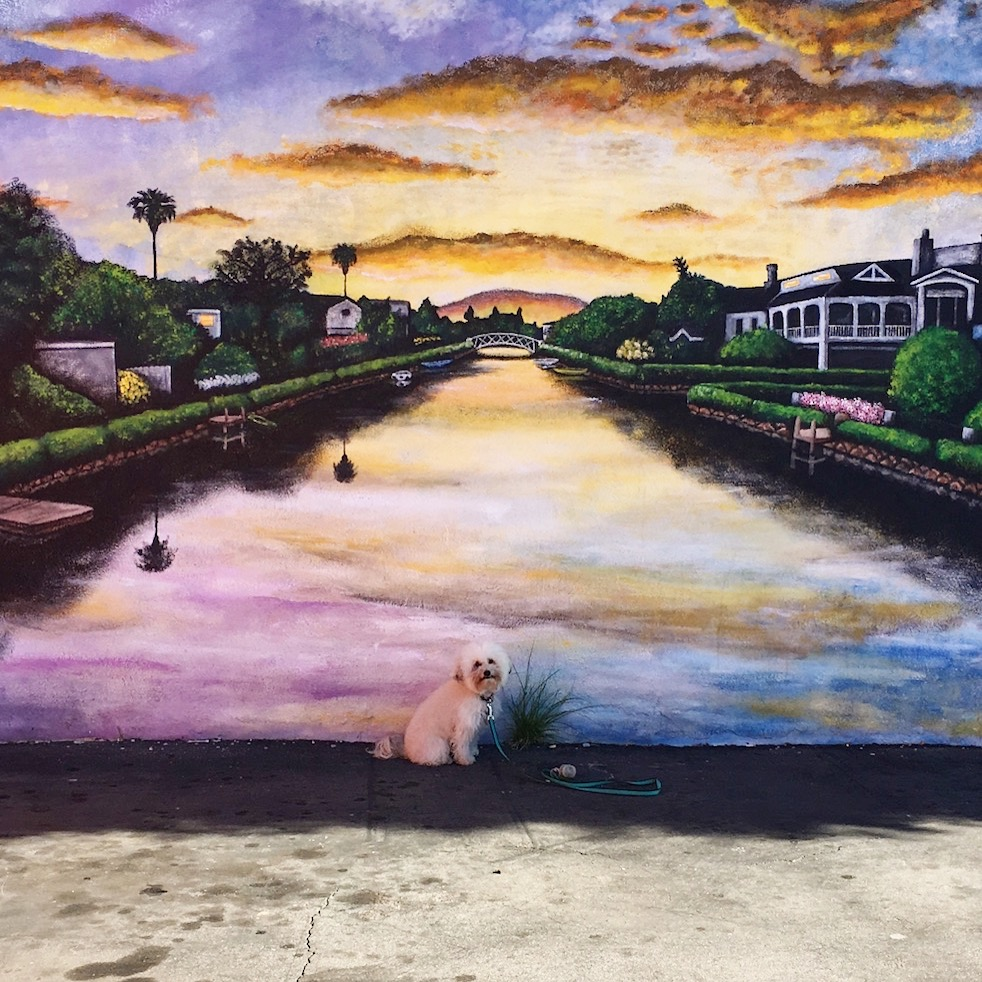 Venice Beach Canals at Sunset Mural | Watson and Walls