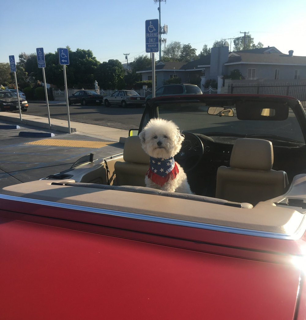 Watson in a BMW E30 Convertible on the way to Palm Springs, California | Watson & Walls