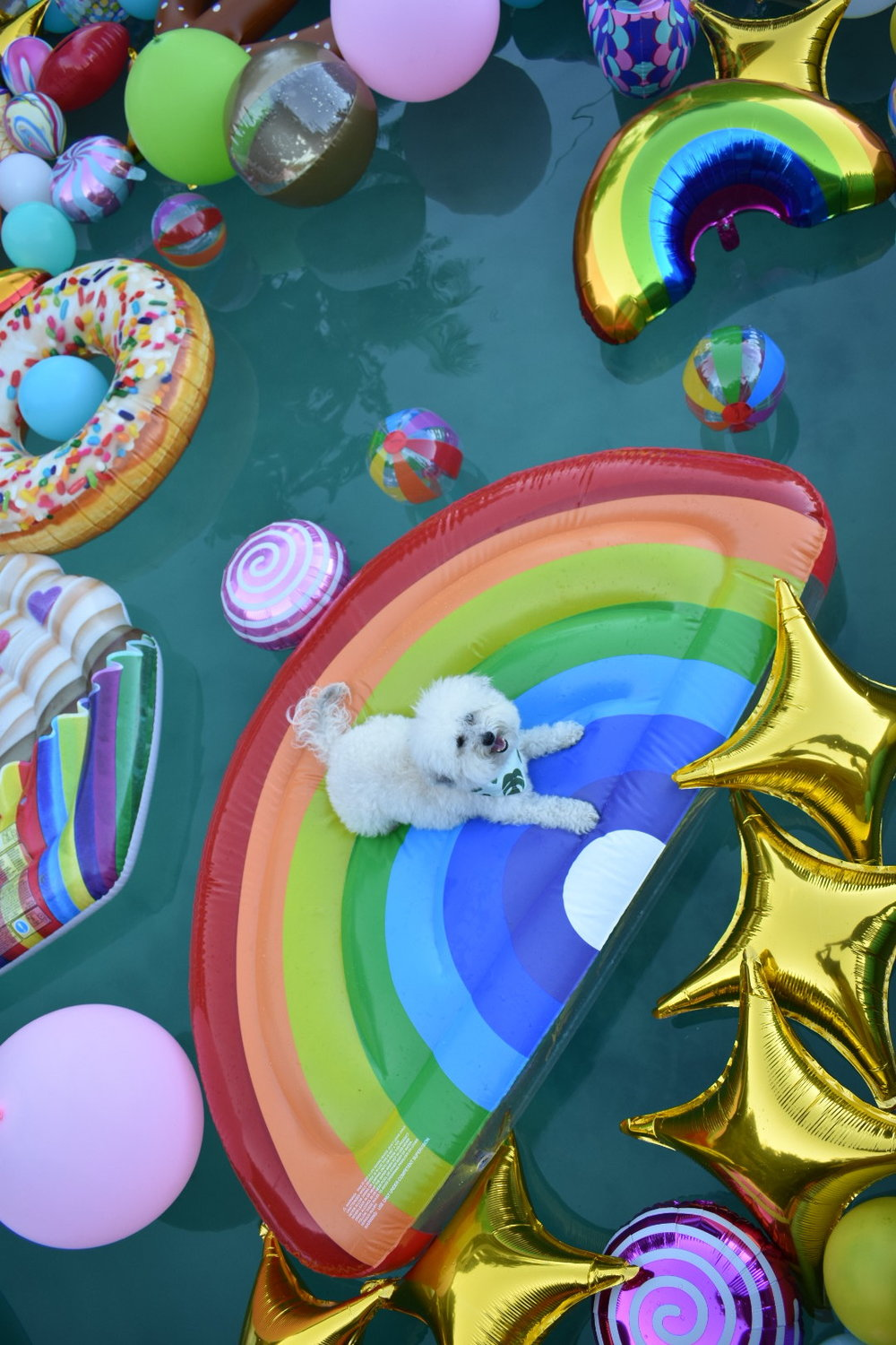 Watson on a rainbow float in the pool in Palm Springs, California | Watson & Walls