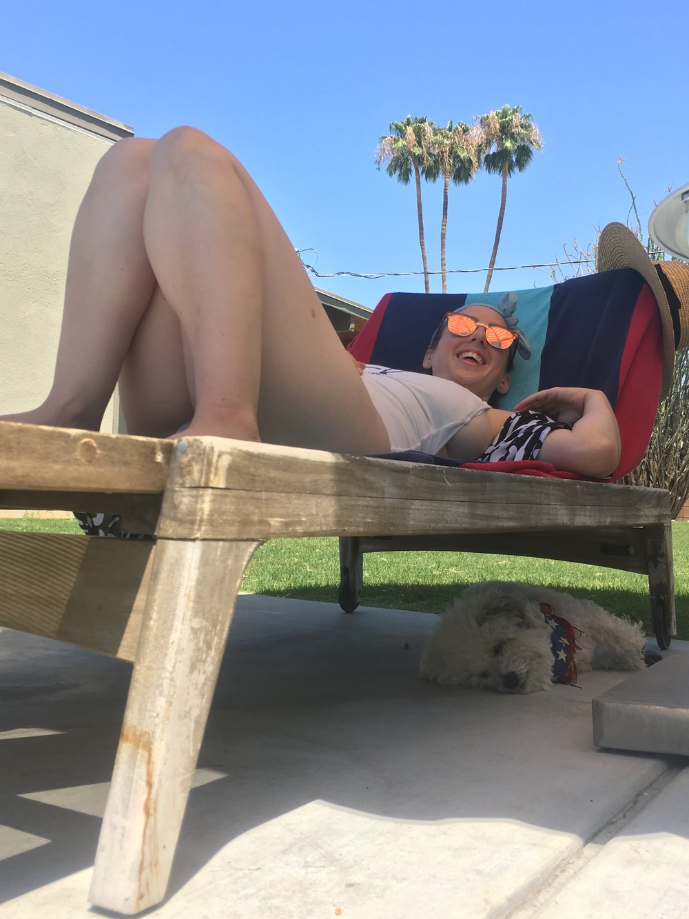 Watson sleeping by the pool in Palm Springs, California | Watson & Walls