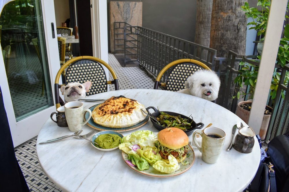 Two cute dogs at the Fig restaurant Fairmont Miramar Santa Monica, California | Watson & Walls