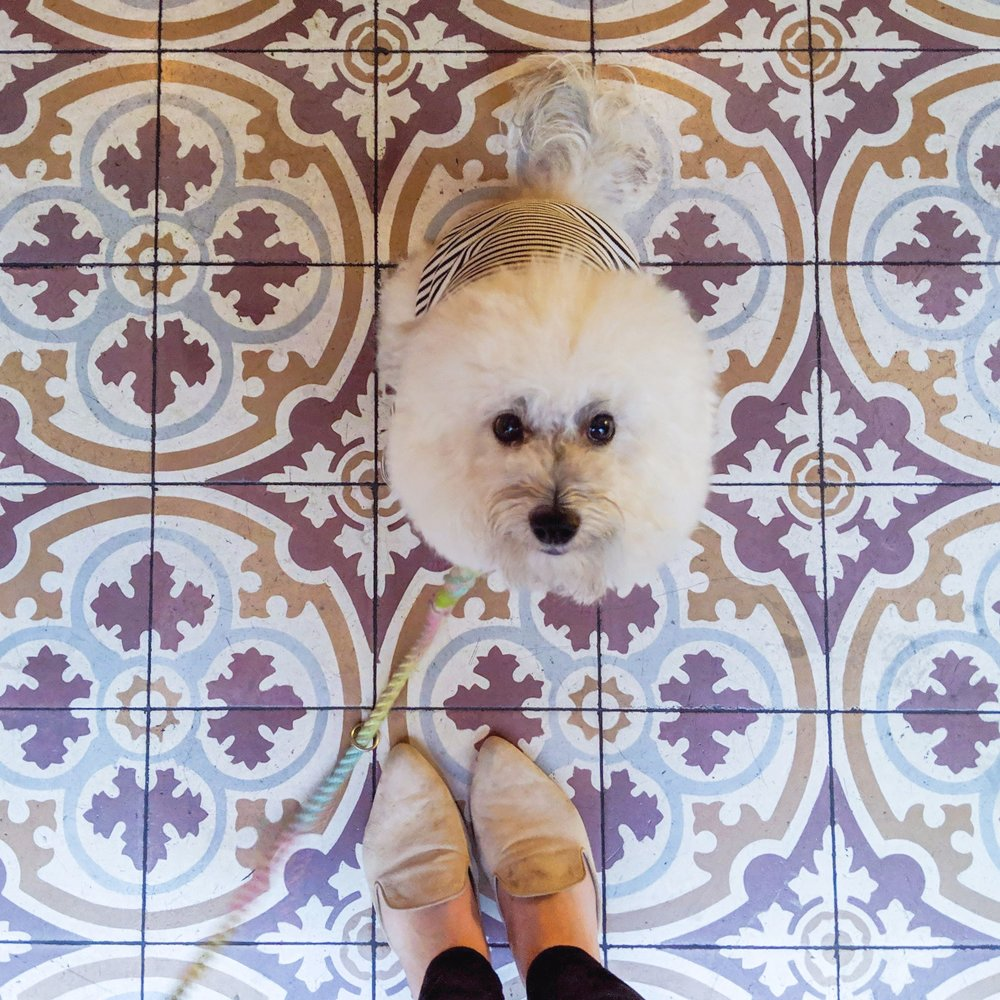Amazing tile floor at Mardi Palihouse West Hollywood hotel restaurant | Watson & Walls