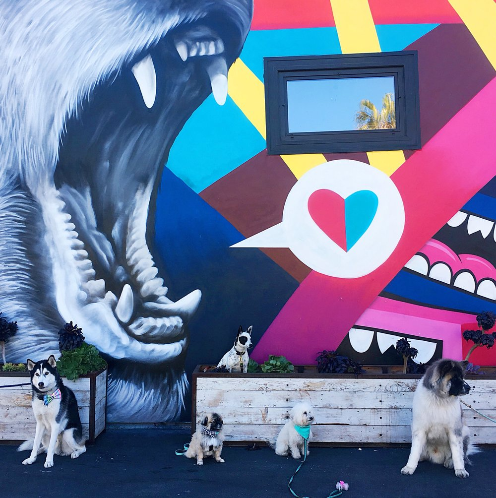 A squad of dogs by a Greg Mike mural in Venice Beach, CA | Watson & Walls