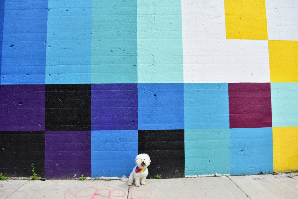 Pixelated multi color wall in Chicago, IL | Watson & Walls