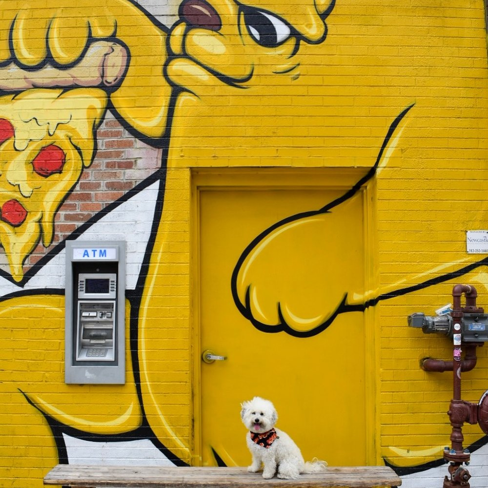 Pizza Bear Champ mural by JC Rivera at Parlor Pizza West Loop Chicago, IL | Watson & Walls
