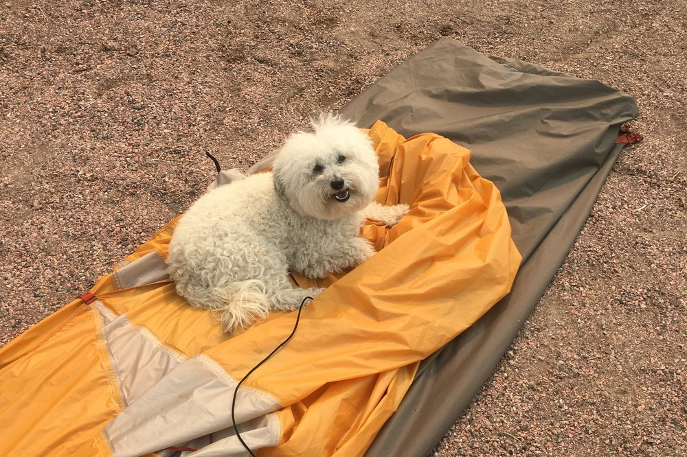 Watson camping by a tent at Great Sand Dunes National Park, Colorado | Watson & Walls