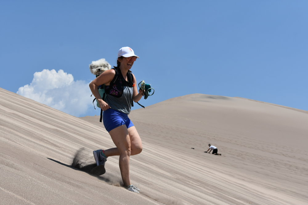 Watson in his backpack at Great Sand Dunes National Park | Watson & Walls