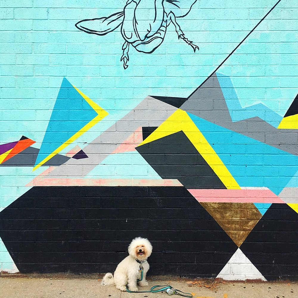 The best murals and walls in Williamsburg Brooklyn, NY | Watson & Walls