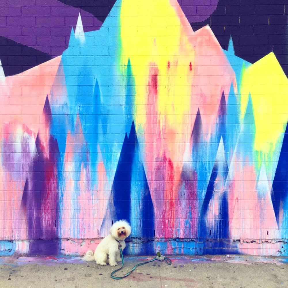 Best murals in Williamsburg Brooklyn, NY | Watson & Walls