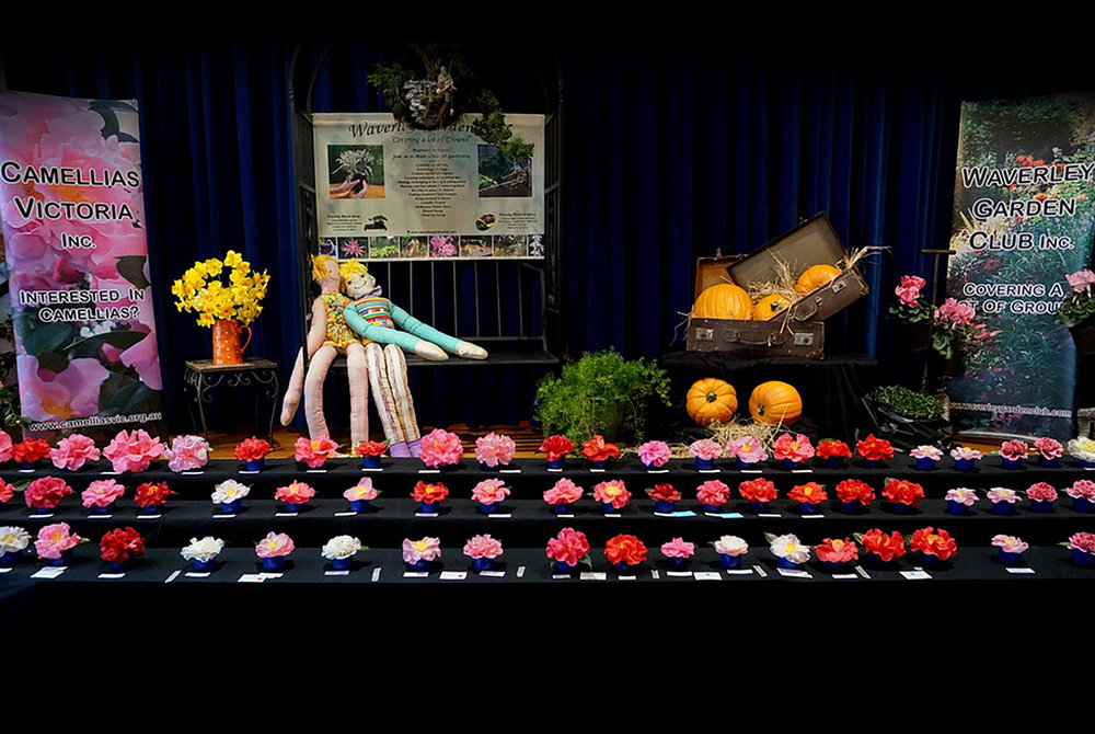 Camellia and Garden Show Stage Display