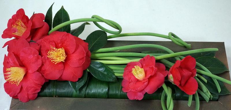 Floral arrangement of J. 'The Czar' Victoria