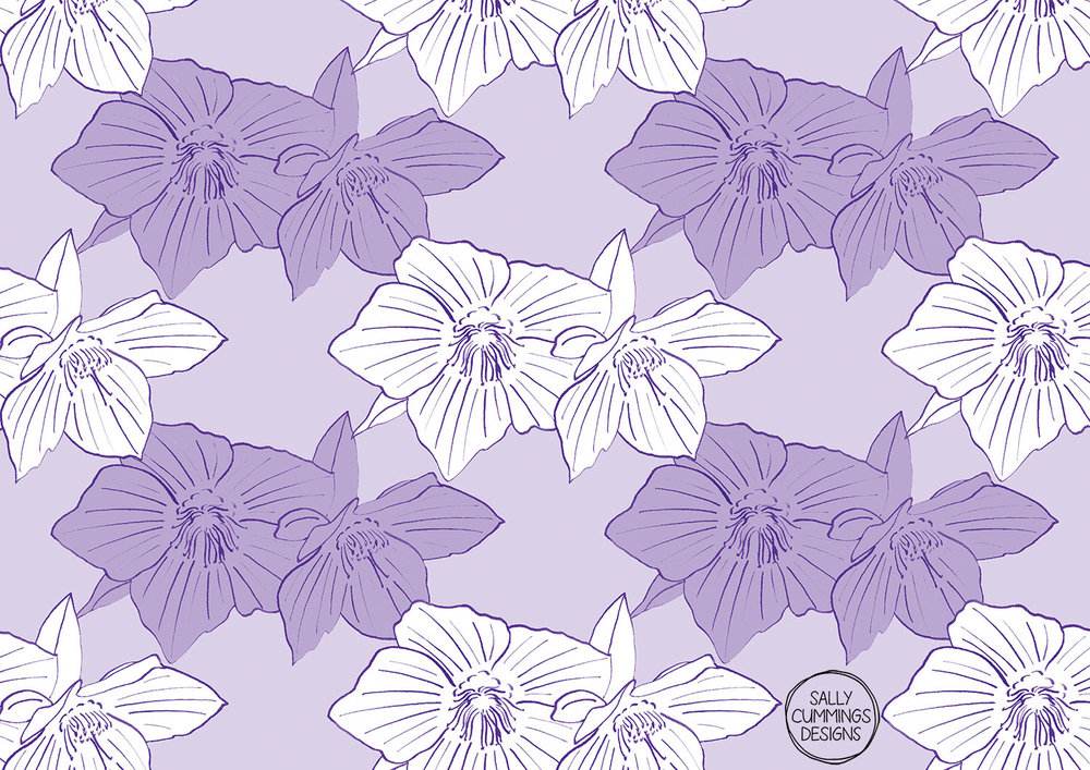 Purple hellebore pattern