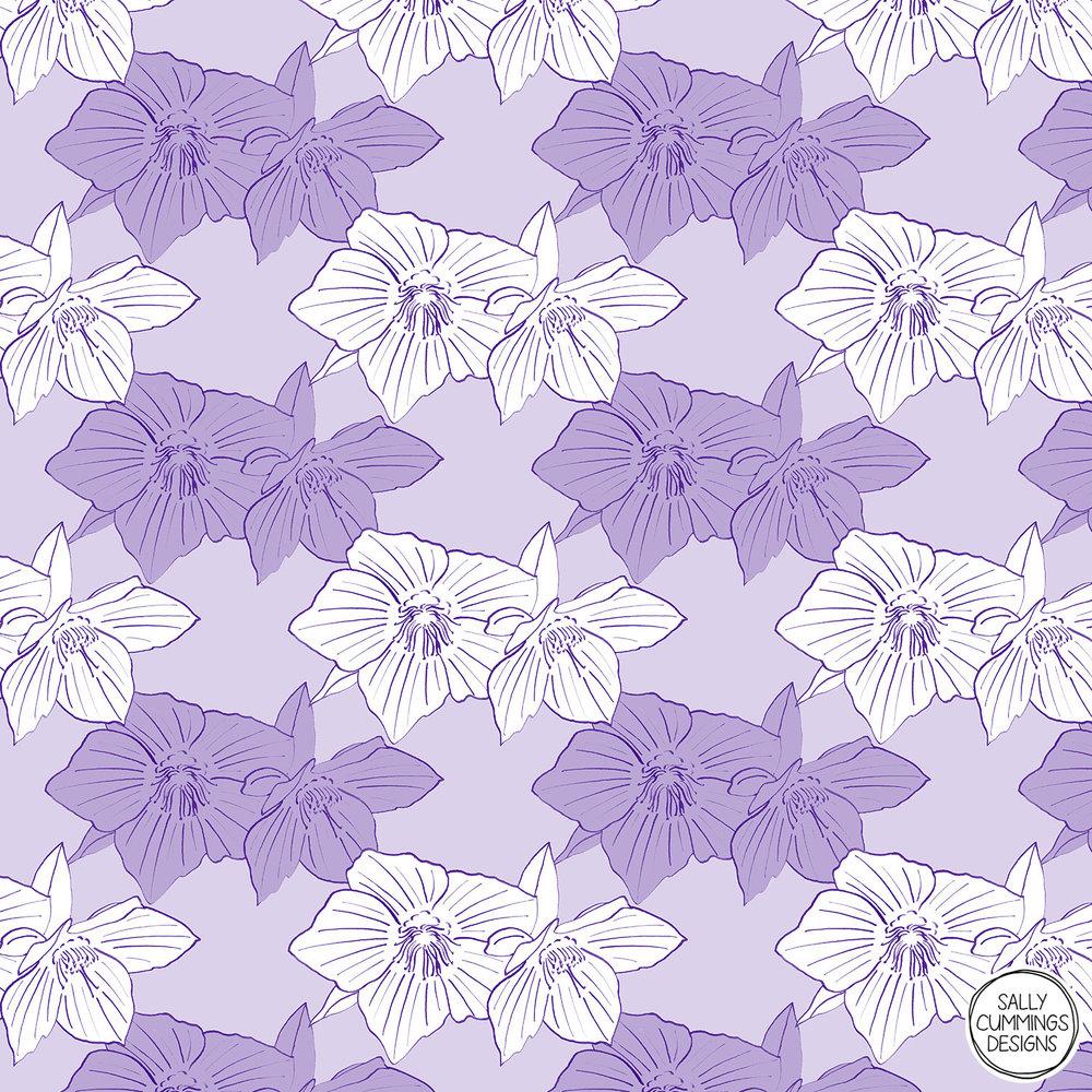 Purple hellebore pattern