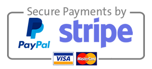 seo-audit-paypal-stripe-briony-cullin-glasgow.png