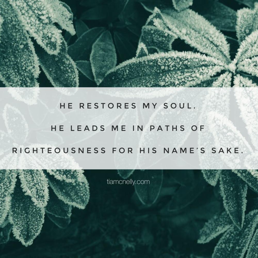 Psalm 23:3 (ESV)