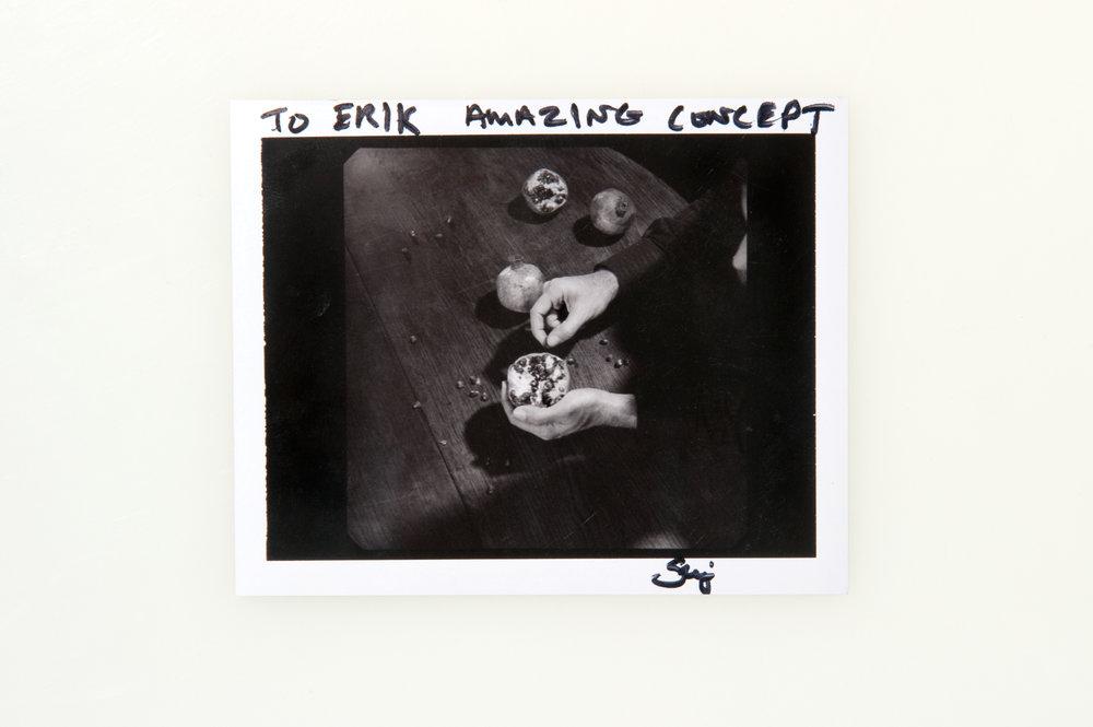 Serj Tankian - Polaroid Type 664