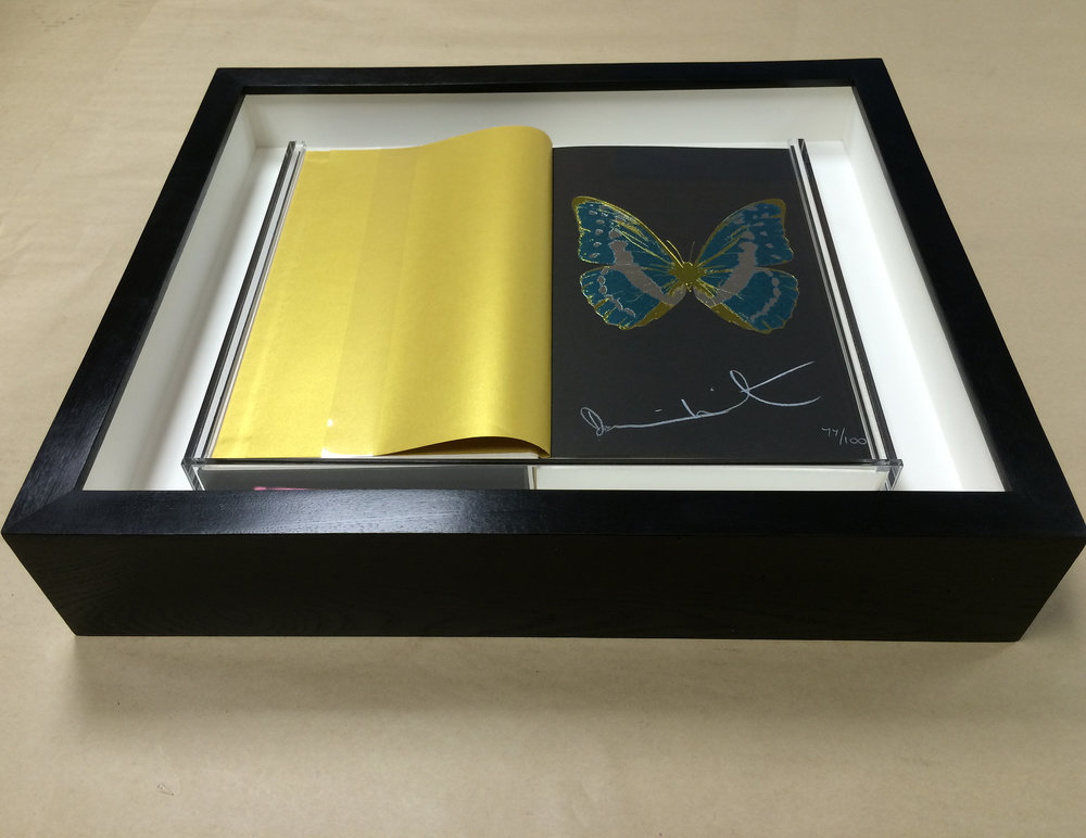 Framed Damien Hirst Limited Edition signed artist's book.