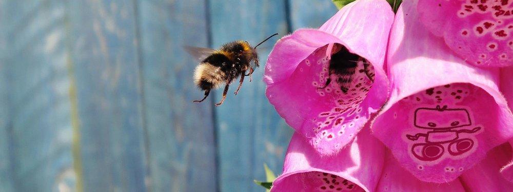 small-robot-bees.jpg