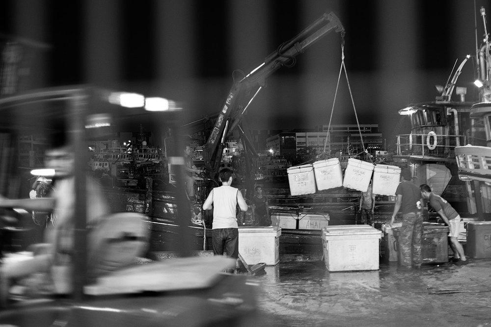 JurongFishPort Documentary_21022016_LAN3182_BW.jpg