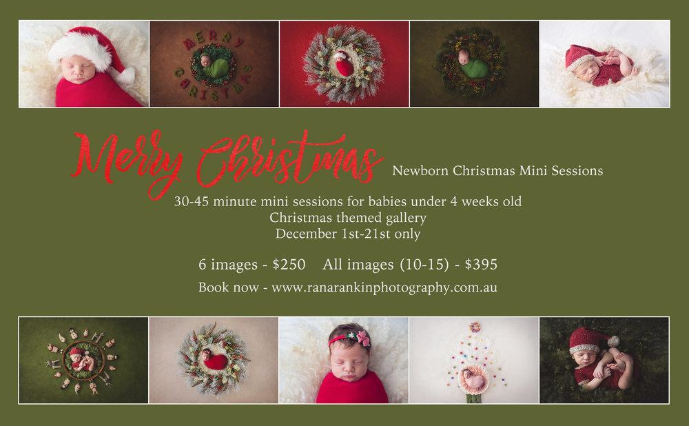 Christmas mini.jpg