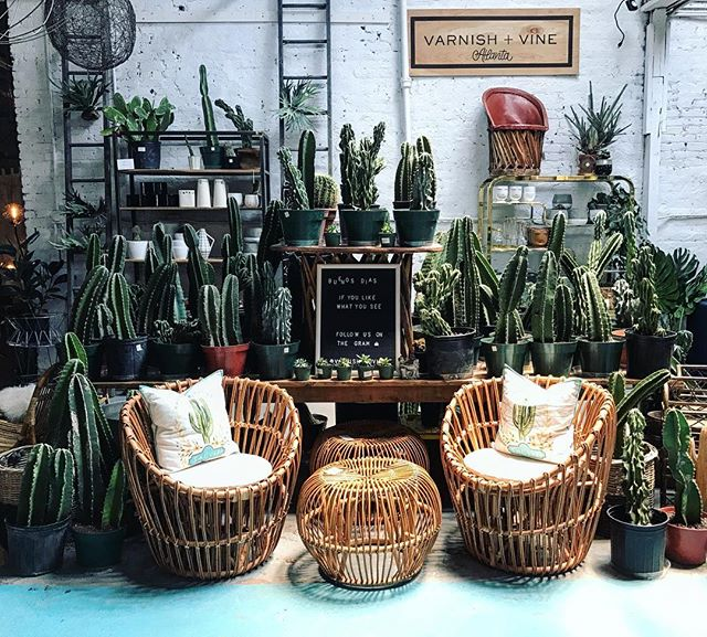 New rattan goods are in stock at both our @parisonponce and @westsidemarketatlanta locations! Come say hi tomorrow 👋🏼🌵🌴 . . . #atl #atliens #atlanta #homedecor #home #instahome #cactus #cactuslover #cactusclub #houseplantsofinstagram #houseplantclub #bohohome #bohostyle #interiors #design #vintagestyle #midtownatl #midtownatlanta #buckheadatlanta #beltlineatl #green #rattan