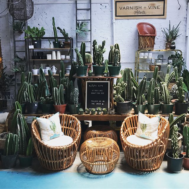 20% OFF ALL FURNITURE today through Sun 5/20 at both of our locations! @parisonponce @westsidemarketatlanta 🙌🏼🌵🌴Show this post at checkout for your discount. . . #atl #atlanta #atliens #home #homedecor #midtownatl #midtownatlanta #instahome #instagood #buckheadatlanta #westsideatlanta #grantpark #inmanpark #o4w #cactus #mcm #vintage #vintagestyle #bohostyle #bohohome